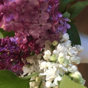 buchet-din-flori-de-liliac
