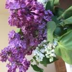 buchet-din-flori-de-liliac-alb-si-mov